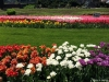 Gradina Botanica din Craiova