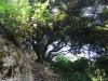 Insula Thassos - Pestera Dragonului (Drakotripa)