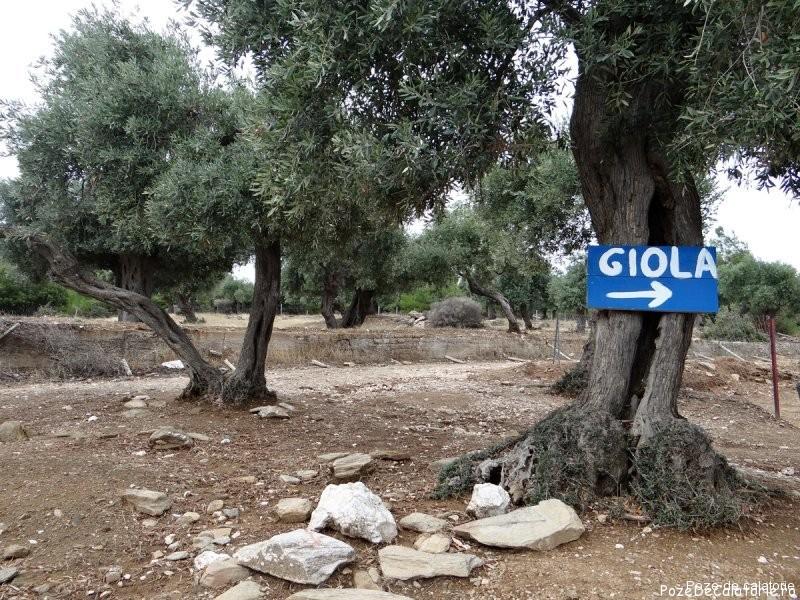 Giola