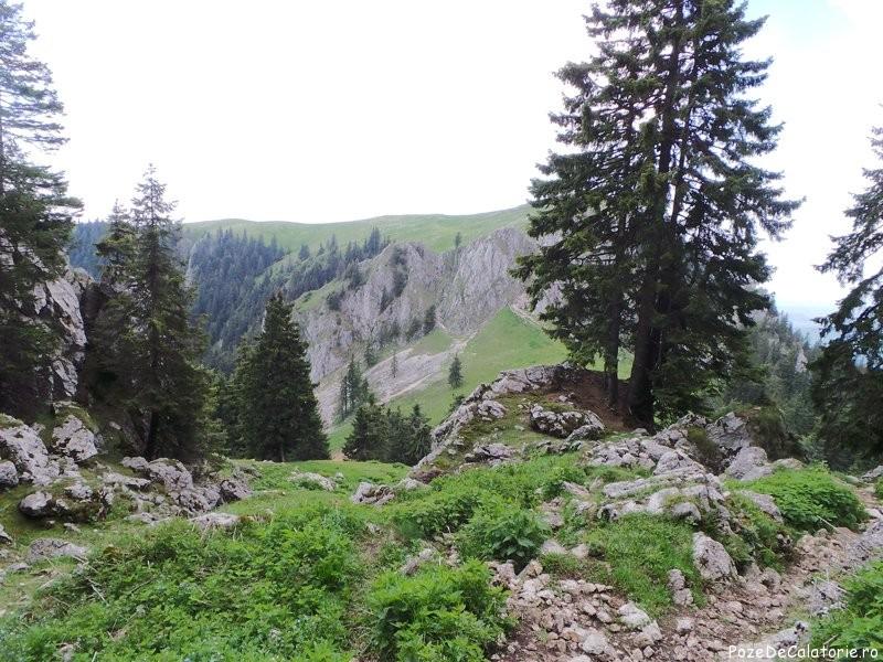 Parcul National Buila - Vanturarita